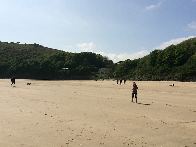 Gorgeous Beaches,this one is Llansteffan, 30 mins away.